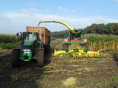 Loonbedrijf Joris Brosens uit Essen in de maïs met eveneens een JD 7750i hakselaar.